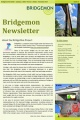 Bridgemon newsletter.jpg