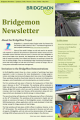 bridgemon newsletter icon 2