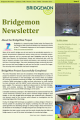 bridgemon newsletter icon 3